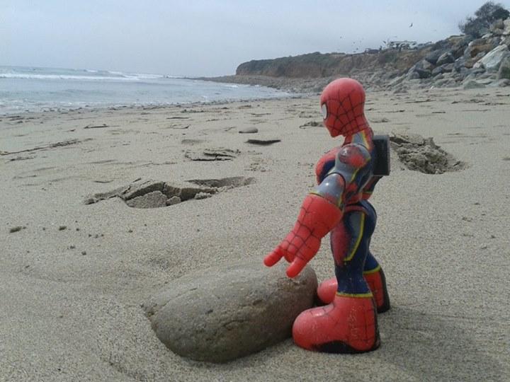 Até o Homem Aranha foi curtir umas férias na Califórnia!
