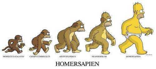 HomerXDarwin